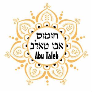 Hummus Abu Taleb