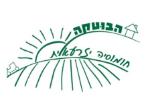 הבוטקה חומוס עברי
