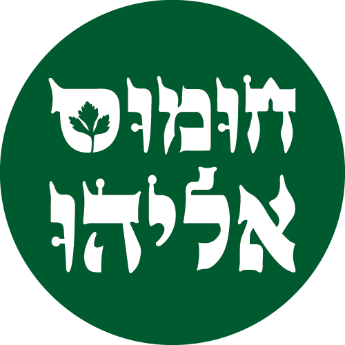 Hummus Eliyahu