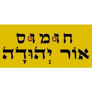 חומוס אור יהודה